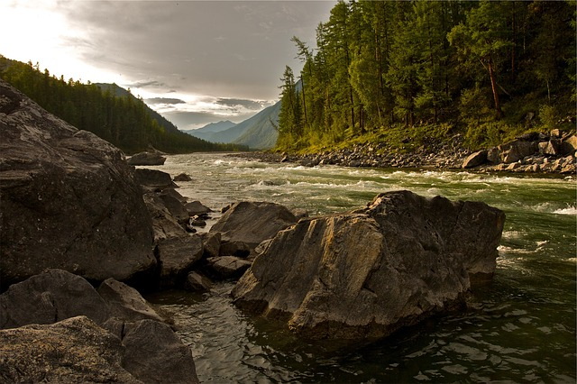 kameny u řeky