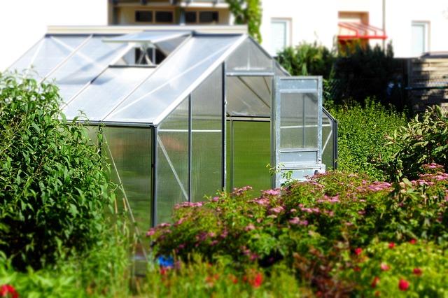 Nikdy není pozdě na skleník